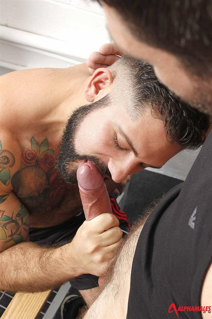 Alphamales Alessandro Del Toro and Craig Daniel Hairy Muscle Jocks Fucking With Big Uncut Cocks Amateur Gay Porn 03 Hairy Muscle Jocks Fucking In The Locker Room With Big Uncut Cocks